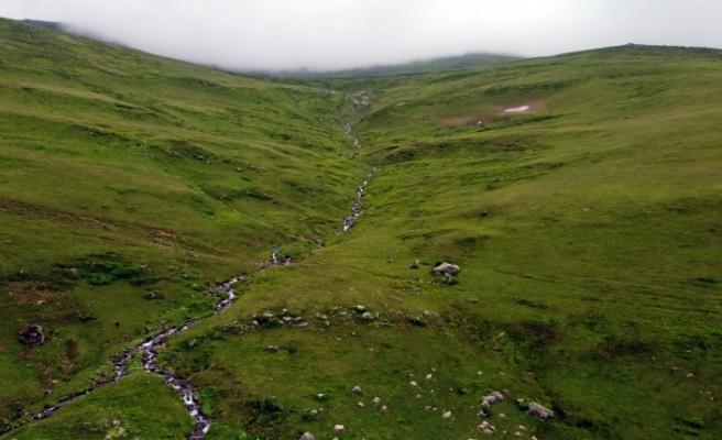 Bayburt'un Doğa Harikası Yaylaları Ziyaretçilerini Ağırlıyor